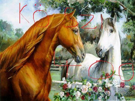 lovas-hatterkepek-szerelmes-lovak.jpg c11e99fc68